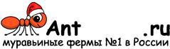 Муравьиные фермы AntFarms.ru - Омск